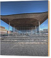 The Welsh Assembly Building 2 Wood Print