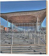 The Welsh Assembly Building Wood Print