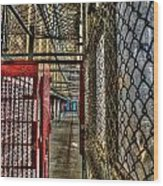 The West Virginia State Penitentiary Cell Hallway Wood Print