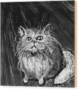 The White Cat Wood Print