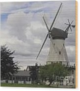 The White Windmill Wood Print