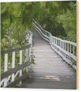 The Whitewater Walk Boardwalk Trail Wood Print