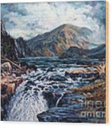 The Wilds Of Lake Superior Wood Print by W  Scott Fenton
