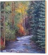 Thecreekearlyfall Wood Print by Victoria  Broyles