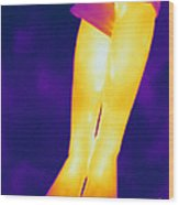 Thermogram Of A Legs Wood Print