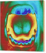 Thermogram Of A Woman's Mouth And Teeth Wood Print
