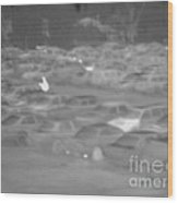 Thermogram Of Cars In A Parking Lot Wood Print