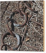 These Rusty Chains Wood Print