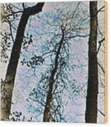 Things Are Looking Up Wood Print