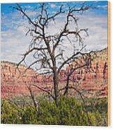 Thirsty Tree Of Sedona Wood Print