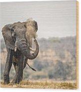 This Is Botswana No.  8 - Feels So Good Wood Print