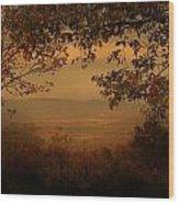 This Land Wood Print