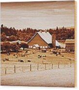 This Old Farm IIII Wood Print