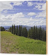 This Way To Eagle Nest - Vail Wood Print