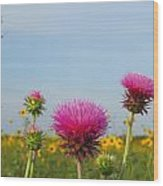 Thistle And Sunflower 2am-110468 Wood Print
