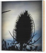 Thistle In The Sky Wood Print