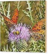 Thistlefly Wood Print