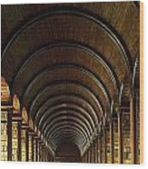 Thomas Burgh Library, Trinity College Wood Print