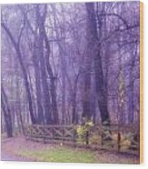 Thomas Road Wood Print