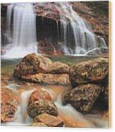 Thomson Falls Wood Print