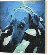 Those Puppy Dog Eyes Wood Print