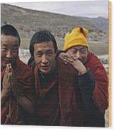 Three Buddhist Lamas In Gansu Province Wood Print by David Edwards