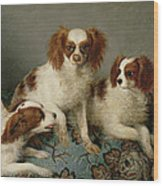 Three Cavalier King Charles Spaniels On A Rug Wood Print