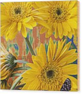 Three Daisy's And Butterfly Wood Print