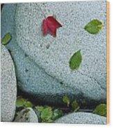 Three Fallen Leaves Lie On A Rock Wood Print
