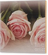 Three Pink Roses Wood Print