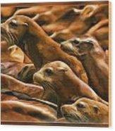 Three Pups Wood Print