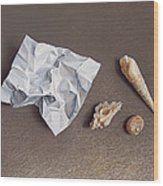 Three Shells For Collection Wood Print