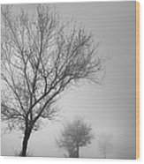Three Silhouettes In The Rain Wood Print