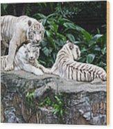 Threesome Wood Print