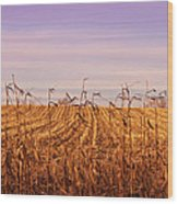 Through The Cornfield Wood Print