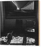 Through The Dark Wood Print