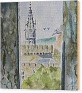 Through The Eyes Of The Prisoner Wood Print