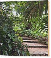 Through The Garden Wood Print