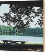 Through The Pavilion At Trap Pond State Park Delaware  Wood Print