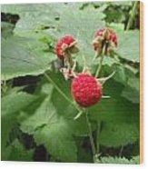 Thumble Berry Wood Print