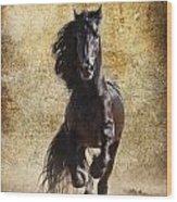 Thundering Stallion Wood Print
