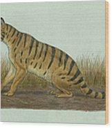 Thylacosmilus Atrox, A Genus Wood Print
