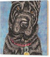 Tia Shar Pei Dog Painting Wood Print