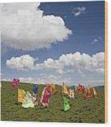 Tibetan Prayer Flags In A Field Wood Print by David Evans