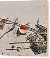 Tidal Treasures Wood Print