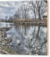 Tifft Nature Preserve Wood Print
