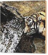Tiger Falls Wood Print