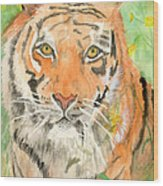 Tiger In The Meadow Wood Print by Delores Swanson