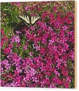 Tiger In The Phlox 6 Wood Print