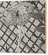 Tiger Lily And Rusty Gate Wood Print